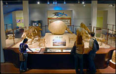 exhibit hall image